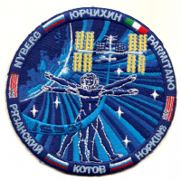 International Space Station Expedition 37 Embroidered Patch - Final Version